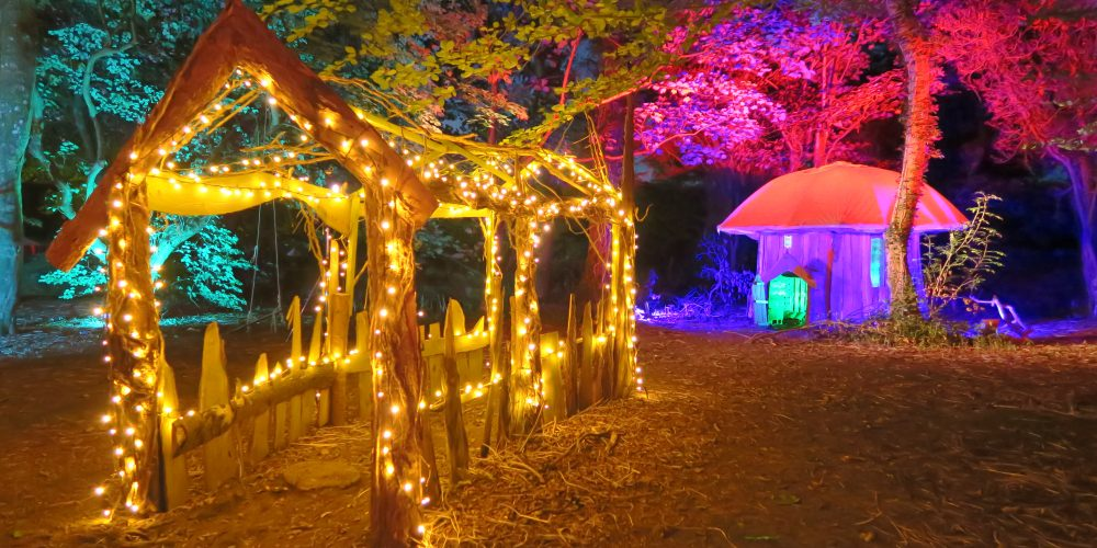 Outdoor-festival-wedding-with-coloured-tree-lighting-and-fairy-lights