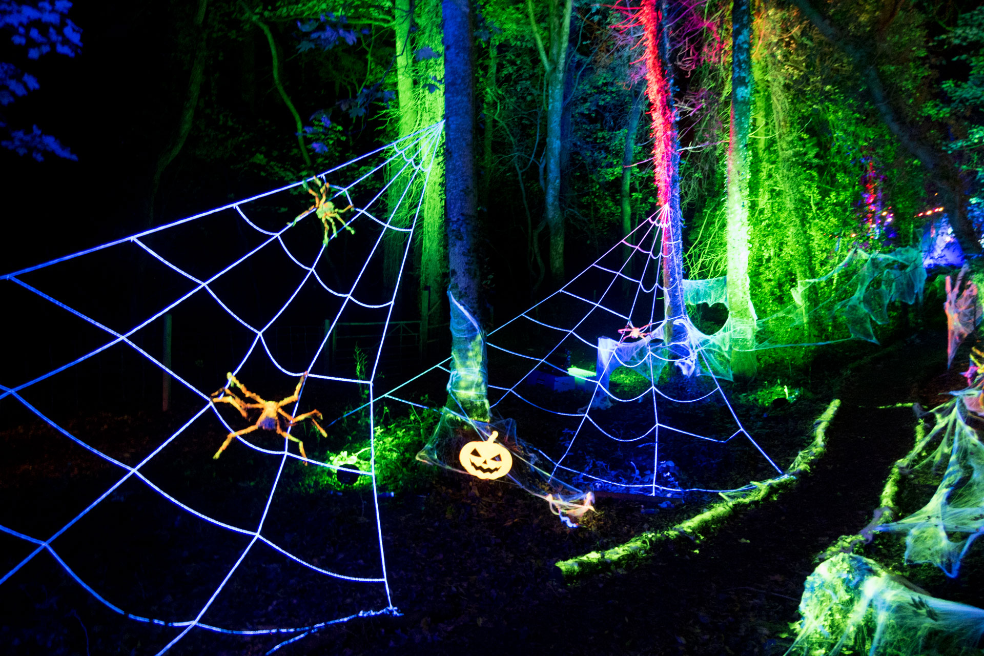 Halloween Outdoor Lighting Event