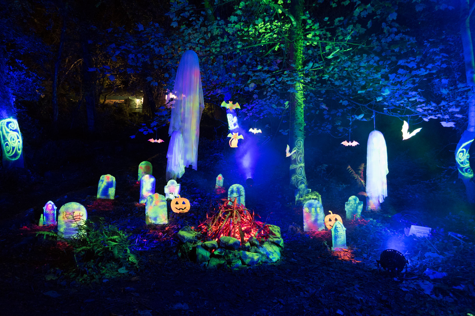Halloween graveyard, at an outdoor event in an enchanted forest in North Wales. Created using LED lighting, UV reactive grave stones, ghosts, pumpkins bats and a cat, with a centrepiece camp fire, created using light.