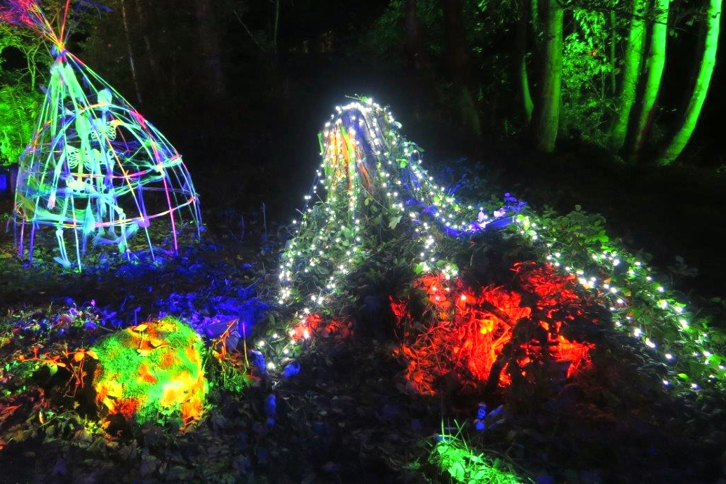 Halloween lighting event in an enchanted forest in North Wales, with UV reactive skeletonsand led light strings. Uplit trees, illuminated in green red and blue by waterproof LED lighting