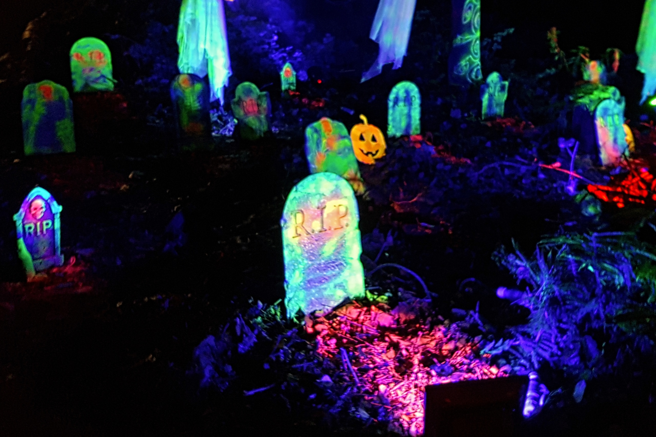 Halloween graveyard, at an outdoor event in an enchanted forest in North Wales. Created using LED lighting, UV reactive grave stones, ghosts, pumpkins.