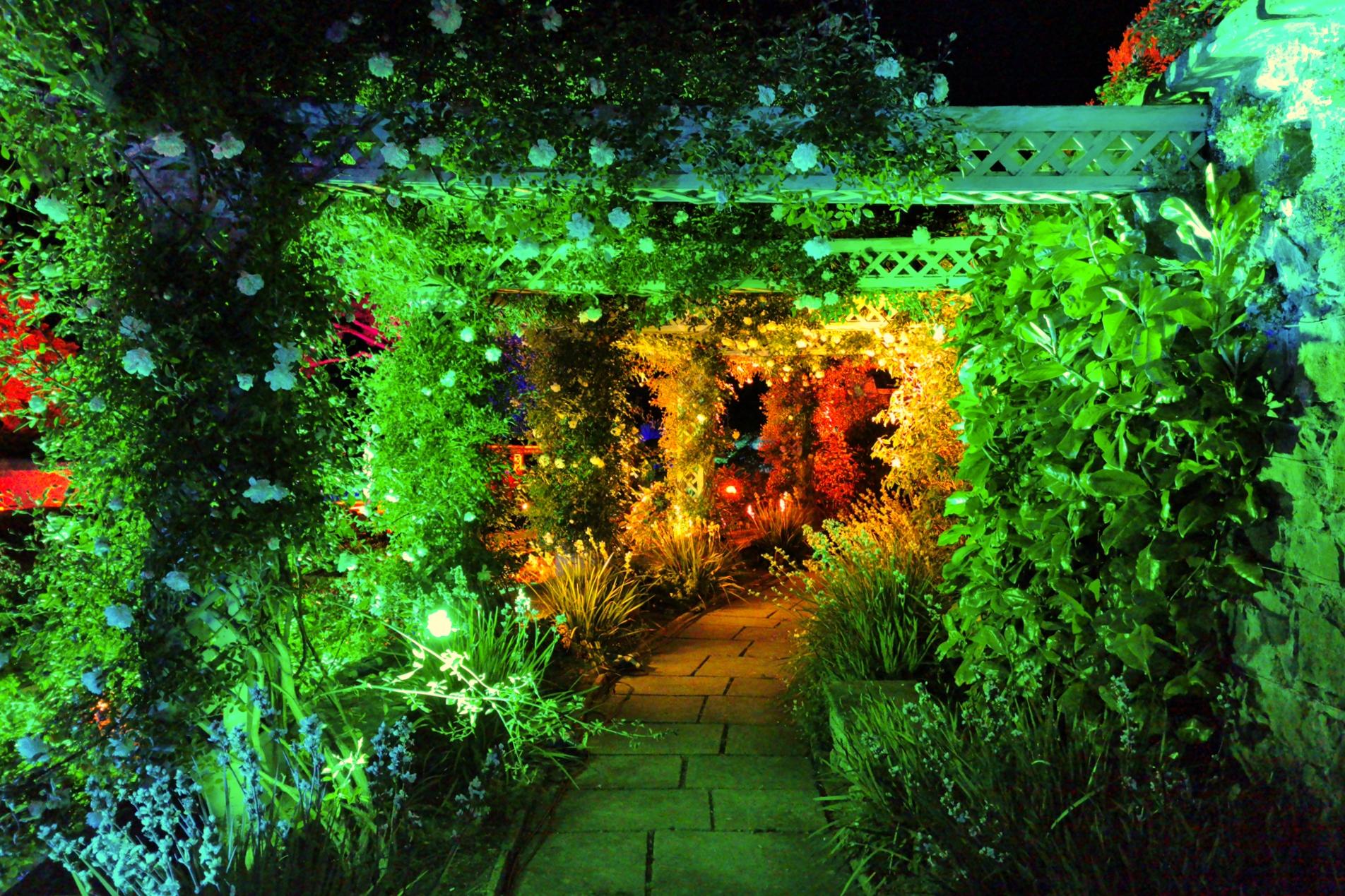 Bodnant Garden Lit Lighting Pergola Trellis 12017
